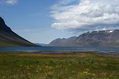 Dynjandisvogur (vsig) Tags: vestfirir iceland arnarfjrur islande
