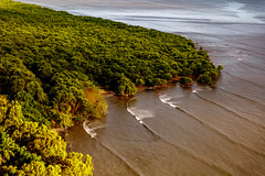 High Tide in the Wetlands (Bernai Velarde-Light Seeker) Tags: trees costa del america mar waves arboles pacific centro central wetlands panama este olas pacifico hightide oceano humedales costadeleste manglares seaocean bernai mareaalta