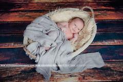 IMG_3560 (Alexandre66) Tags: baby france canon 66 newborn l bebe usm f28 perpignan 6d nouveaun 1635mm pyreneesorientales