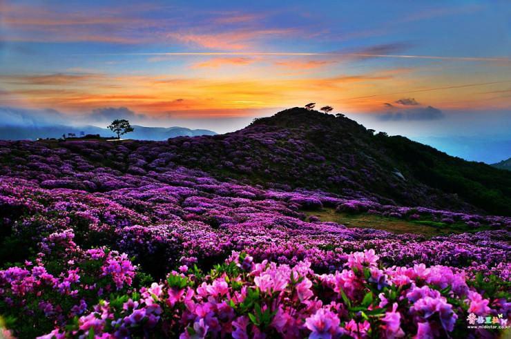 Mt-Hwangmaesan-Photo-by-Jose-Choi-740x491