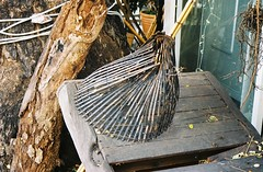 Thong Lo - Bangkok (jcbkk1956) Tags: old tree film analog 35mm table thailand wooden nikon basket kodak bangkok lo thong bark nikkor 80d