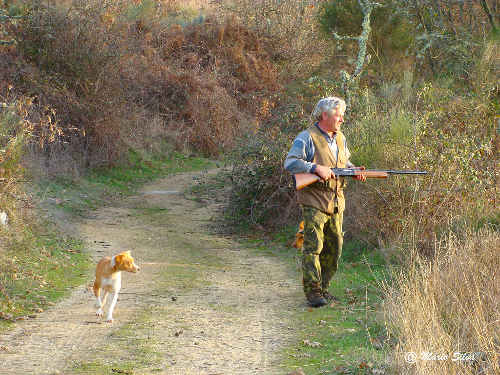 Aguas Frias (Chaves) - ... o caçador esparando a caça ...