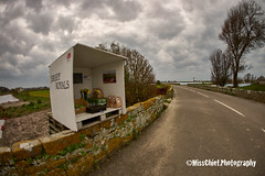 27. roadside  DSC00122 ( MissChief Photography ) Tags: road field clouds jersey roadside stouen honestybox 116picturesin2016