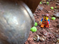 Garden trekking! :D (parik.v9906) Tags: trekking project garden fun lego outdoor days legos 365 iphone minifigure emmet minifigures 365days 365project iphoneography iphone5s thelegomovie