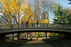 Central Park IMG_0271 (Idaliska) Tags: nyc newyork centralpark manhattan