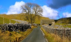 Yorkshire Dales (plot19) Tags: road uk family trees england sky tree english love wall landscape photography nikon rocks northwest britain yorkshire north limestone british northern dales malham d7100 plot19
