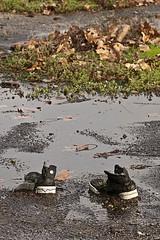 you go away, I will stop here - Novembre 13 170low (luca19632 - Luca Cortese) Tags: urban milano scarpe pozzanghera abbandono viamecenate dissoluzione dissoluzioni