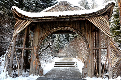 Wooden gate (MelindaChan ^..^) Tags: china winter plant cold ice water forest mel melinda sichuan chanmelmel melindachan
