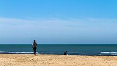 ELLA EL PERRO Y LA MAR (bacasr) Tags: blue sky espaa dog naturaleza beach nature water girl azul walking andaluca spain sand agua playa arena perro cielo cdiz openair paseando airelibre seamar