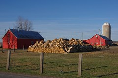 Rserve de bois pour temps froid... / Cold weather solution... (Pentax_clic) Tags: wood robert pentax quebec farm warren kr avril ferme bois 2016 anse vaudreuil imgp2969