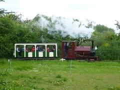 P1050756 (Hampton & Kempton Waterworks Railway.) Tags: loop devon galaday 2015 darent