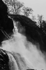 Atthirapilly Waterfalls, India (rakerumotion) Tags: blackandwhite naturaleza india nature water waterfall drops agua kerala gotas cataratas cascada chorros precioso cascadas wondersofnature beautyofnature thebeautyofnature