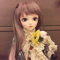 Fujiko Grey Makos (sailorchiron) Tags: sd bjd mori noella sd13 leeke leekeworld dollga morigirl morikei