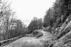 You take the high road... (AdamMatheson) Tags: blackandwhite bw cloud mountain mountains monochrome clouds canon mono cycling scotland blackwhite scenery scottish scene ixus loch choices lochs steep compact compactcamera arrochar lowcloud lochlong canonixus arrocharalps roadcycling scottishlandscape argyllbute scottishmountain tullochroad canoncompact ixus82is canonixus82is 82is adammatheson helensburghphotographer helensburghphotography adammathesonphotography argylesbowlinggreen