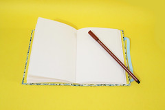 Mini-Caderno 'Floral Azul' (Bella Mia Ateli) Tags: handmade crafts feitomo bookbinding caderno handbooks cadernos papelaria cadernosartesanais cartonagem encadernaoartesanal 100artesanal produtosartesanais papelariaartesanal costurabelga encadernaomanualartstica