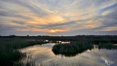 DSC_0997 (baianodomenico) Tags: mare campania fiume tramonti oasi volturno castelvolturno