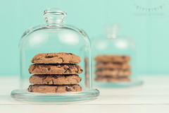 Chocolate chip cookies under cloches (Ramn Antiolo) Tags: morning stilllife food brown white kitchen glass breakfast vintage table dessert wooden cozy cookie bell sweet chocolate turquoise board traditional mint lifestyle peanuts retro sugar safety nostalgia biscuit homemade cover snack dome pastry jar chip shield safe transparent temptation pastries isolated cloche baked chocolatechip protect belljar calories chocolatechipcookie shabbychic instagram