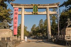 20160302-081149_5K_80 (pya) Tags: kyoto  kitano  tenmangu