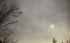 The_way (Robert Olaf) Tags: morning blue sun bird film fog work way landscape sadness spain sad camino kodak grain werlisa kodakportra400 landspaces robertolaf