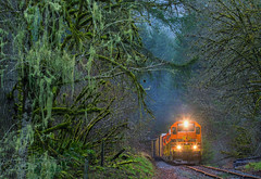 Earthy (MRL 390) Tags: railroad west rain oregon train moss rainforest norton toledo lichen freight pw moist freighttrain emd gp40 portlandwestern gp40p2 emdgp40 toledohauler pw3001 pwgp40p2 nortonoregon