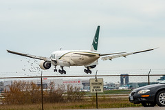 Flock of birds rises from bushes at threshold to runway 05 as a PIA B777 lands (Bob from Caledon) Tags: aircraft airplanes aeroplanes arrivals pakistaninternationalairlines cyyz apbgy b777200lr runway05 torontointernationalpearsonairport