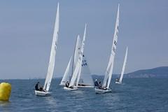 Nordio16_23 (Alberto Lucchi) Tags: club star sailing yacht sail tito regatta trieste regata 2016 coppa nordio adriaco