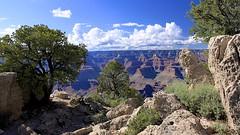 Grand Canyon (oxfordblues84) Tags: trees arizona sky usa tree clouds nationalpark scenery grandcanyon horizon southrim chasm grandcanyonnationalpark roadscholar naturalwonderoftheworld roadscholartour roadscholartrip roadscholarfieldtrip grandcanyonnationalparkexploringthenorthandsouthrims