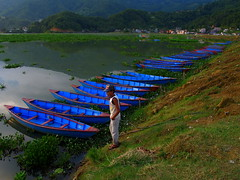 Rental boats (Py All) Tags: blue nepal lake man water boats outside boat asia eau lac bleu asie pokhara extrieur phewa oudoor homme barque barques npal