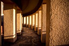 (wolfartf) Tags: park parque light sunset shadow brazil luz sol paran beautiful twilight warm do day saturday sunny sombra shades curitiba quente sbado pr tangu