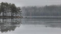 20160210089928 (koppomcolors) Tags: sweden sverige scandinavia glaskogen värmland varmland koppomcolors