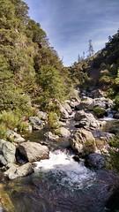 Forks of Butte Creek (blmcalifornia) Tags: blm buttecreek bureauoflandmanagement forksofbuttecreek