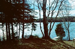 Algonquin (Laura-Lynn Petrick) Tags: toronto nature water outdoors natural hiking earth 35mmfilm drives wilderness adventures bluffs heights earthly naturistic algonquinontario kaidaveybellin lauralynnpetrickabstract lauralynnpetrickkai lauralynnpetricknature lauralynnpetrick35mm torontoon35mm lauralynnpetricktorontonature natureintoronto35mm lauralynnpetrickalgonquin lauralynnpetrickalgonquinontariocanada