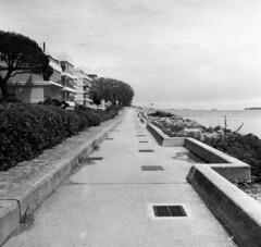 8079.Sea front (Greg.photographie) Tags: sea blackandwhite bw 6x6 film analog mediumformat noiretblanc 400 28 mandelieu c2 foma 80mm mamiyaflex sekor moyenformat r09