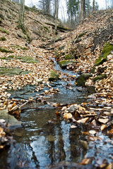 Small anonymous stream (Stimoroll) Tags: blue trees mountains forest stream poland hills atumn silesia slask beskidy ustron beskid besid cityofpoland