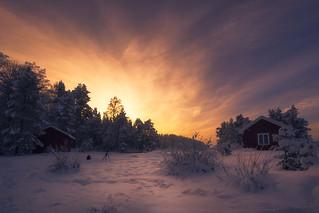 Morning Light XII