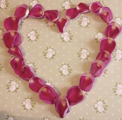 vintage rose heart 44/366 (auroradawn61) Tags: uk roses england interestingness heart dorset valentines athome february poole 2016 tickledpink explored hamworthy vintageroses lumixlx100 2016yip 366daysin2016 vintageroseheart