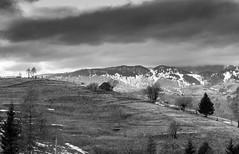 Lonely House (Albert Dobrin) Tags: house mountains landscape romania transylvania transilvania brasov bran carpati sheperd carpathian rucar