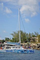 DSC_4400 (shutterbugss) Tags: nikon diving du cliffs jamaica tropical negril cliffdiving rickscafe nikond90