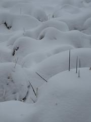 IMG_8639 (Bike and hiker) Tags: winter mist hiver sneeuw neige venn hoge hautes fagnes venen hohes botrange neur bayehon low