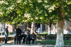 Echmiadzin (modaser) Tags: streetphotography caucasus armenia yerevan kavkaz echmiadzin erevan  hayastan