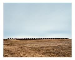 chesterville (Mriol Lehmann) Tags: rural landscape spring fields bales arthabaska