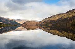 Reflection (Shane Jones) Tags: lake reflection water nikon loch lochlomond 2470mm d7000