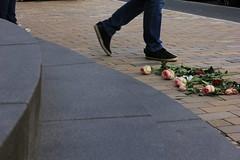 Stolpersteine (10) (Rdiger Stehn) Tags: germany deutschland europa leute blumen menschen stadt rosen schuhe fsse kiel stolpersteine schleswigholstein stolperstein denkmal 2000s brgersteig norddeutschland schauspielhaus 2016 gehweg mitteleuropa gehsteig strase 2000er fusgngerweg schauspielhauskiel canoneos550d kielblcherplatz
