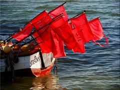 Fishing boat on the Baltic Sea (Ostseetroll) Tags: water geotagged deutschland wasser flags balticsea fishingboat ostsee deu schleswigholstein fahnen fischerboot ostseestrand sierksdorf geo:lat=5406149052 geo:lon=1076424230