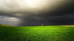 spotlight (drstar.) Tags: spotlight lonely storm flickr flickrturkey d610