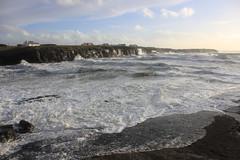 IMG_8368 (DaveGifford) Tags: ireland spanishpoint wildatlanticway