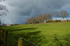 ominous sky [explored] (carol_malky) Tags: trees sky sunlight clouds buildings dark shadows ominous footpath explored