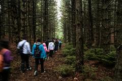 walking towards (aniretak) Tags: trees people mountain tree nature forest europe outdoor hiking walk south athens adventure greece athina attica parnitha attiki
