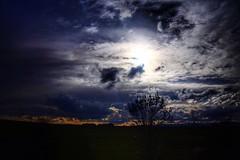 Clouds And Sky Cloudy Sun Sunset Sunset Silhouettes Tree Sillouette EyeEm Best Shots EyeEm Nature Lover EyeEm Best Edits (Dari_Extension) Tags: sunset sun tree cloudy sillouette cloudsandsky sunsetsilhouettes eyeembestedits eyeembestshots eyeemnaturelover