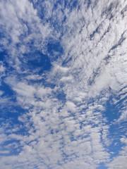 DSC01856 (johnjmurphyiii) Tags: sky usa snow clouds yard spring connecticut shelly cromwell originaljpeg johnjmurphyiii 06416 sonycybershotdsch90